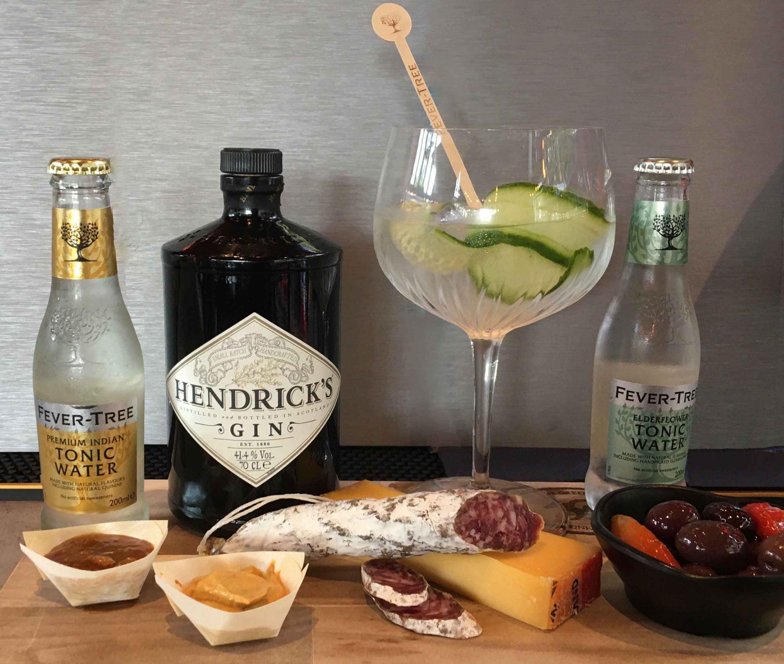 Gin Tonic and Bites | Lola the Green Aardvark | Foodbar